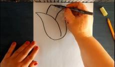 Rajzoljunk tulipánt!