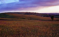 Színek és kontrasztok naplemente után Fiatfalva határában