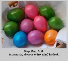 Élénk színű tojások