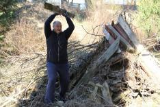 Az önkéntesek igyekeztek külön választani a hasznosítható és a megsemmisítendő faanyagot