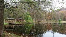 Beregvár-kastély park