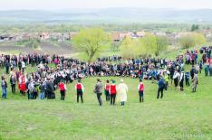 Apácai kakaslövés - Verseny a falu határában
