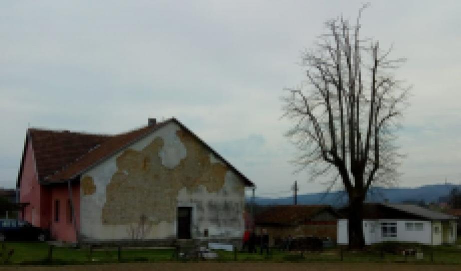 Régi és új iskola és a hársfa