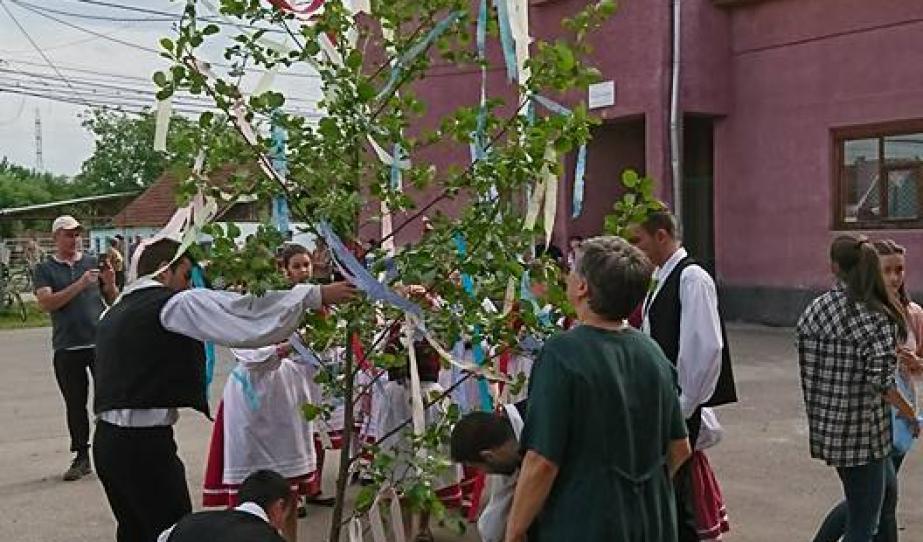 Májusfa díszítése a május 1-jei ünnepségen