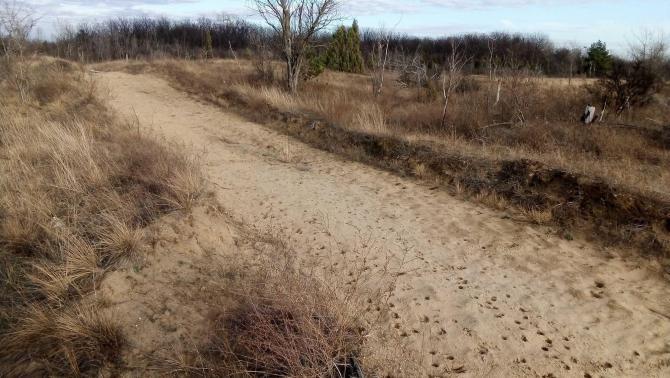 Delibláti homokpuszta