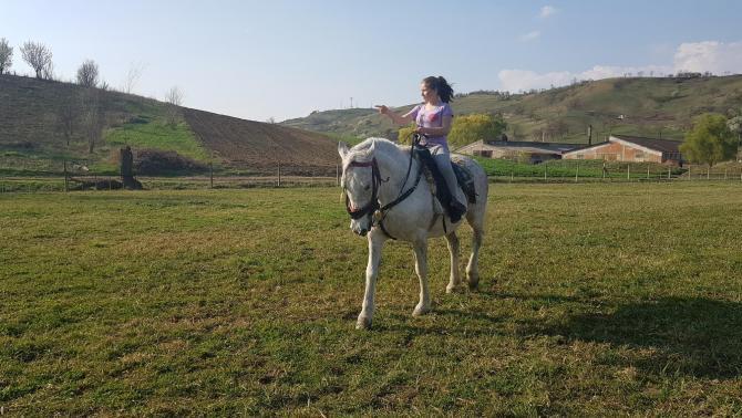 Először a lovon